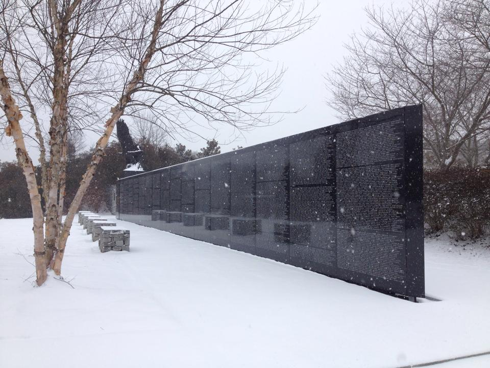 GAC Eagle Scout Wall in Snow